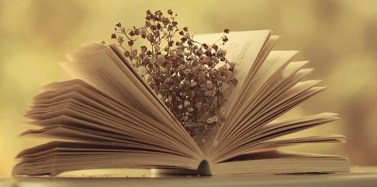 cảm thụ văn học
